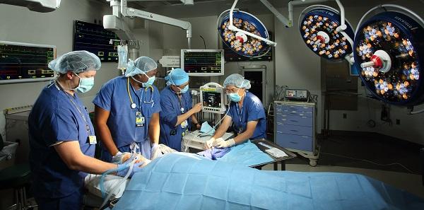 Liver Transplant Fellowship – Johns Hopkins Anesthesiology